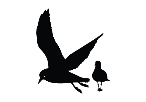 bird vector silhouette Archives - SV Stock Blog