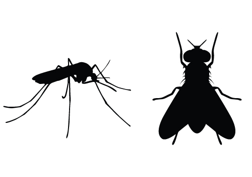 Insects silhouette vector-01