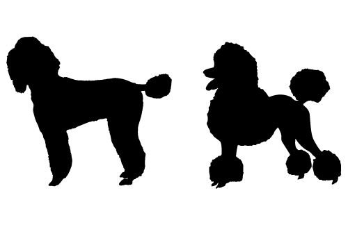 poodle  dog silhouette vector-01