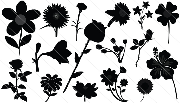 flower silhouette vector download roses sun flowers